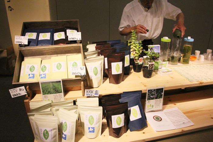 静岡茶 fromあまがた フロムあまがた 天方 遠州森町 在来品種 緑茶
