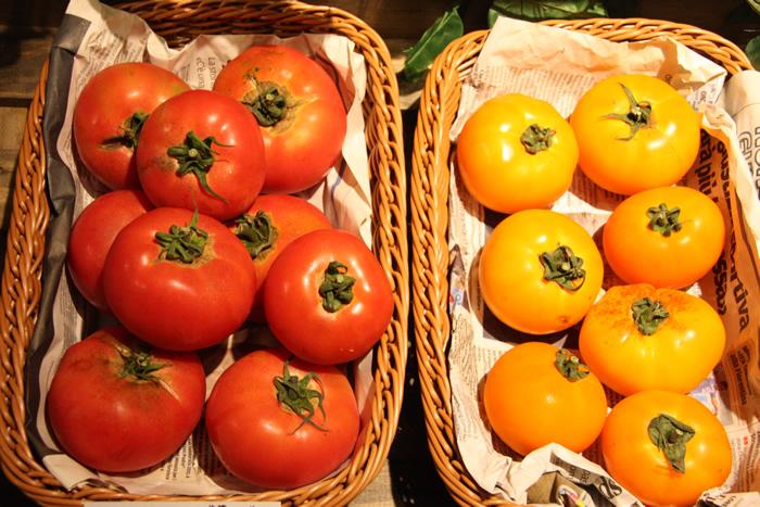 岡本農園 北海道中札内村 トマト