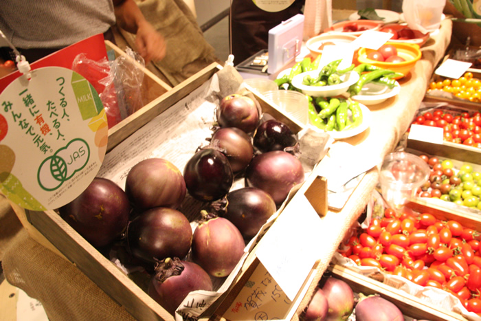 オーガニック農場 森田くん家 北海道新篠津村 有機トマト