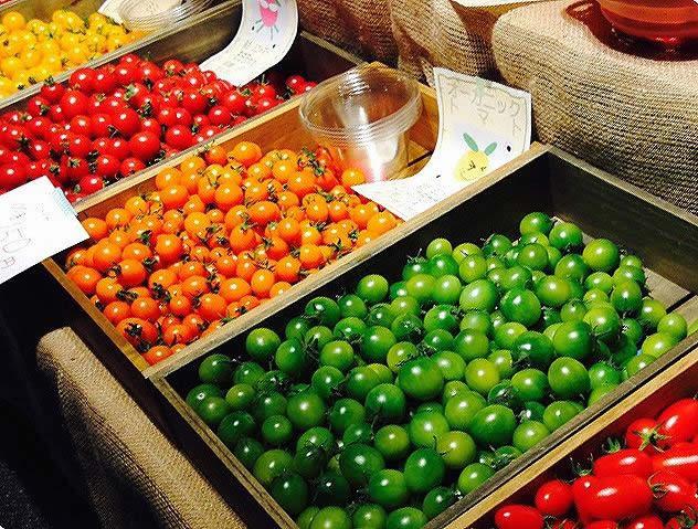 森田くん家 有機トマト