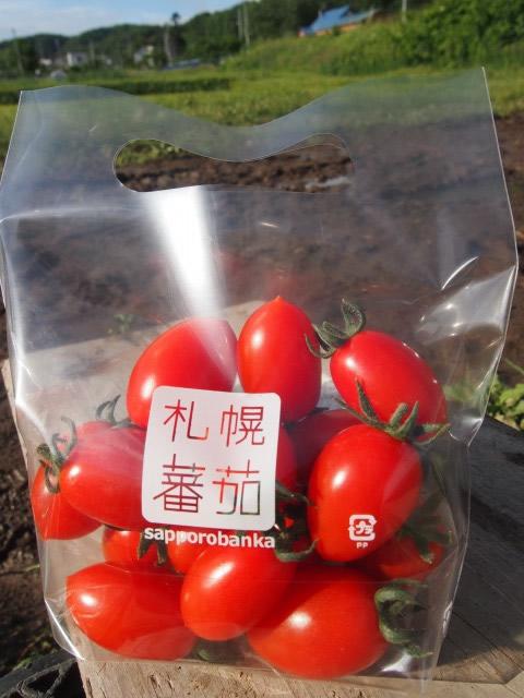 ふるさとファーム ミニトマト 札幌蕃茄