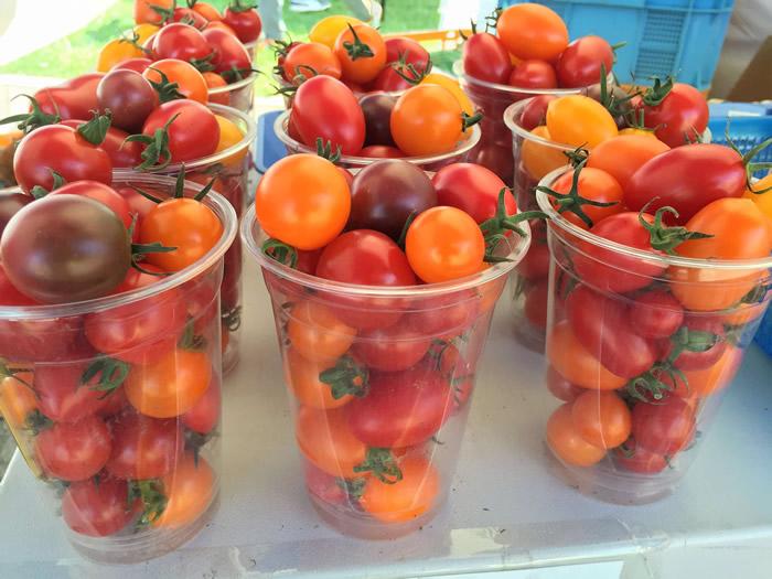 堀農園 ミニトマト