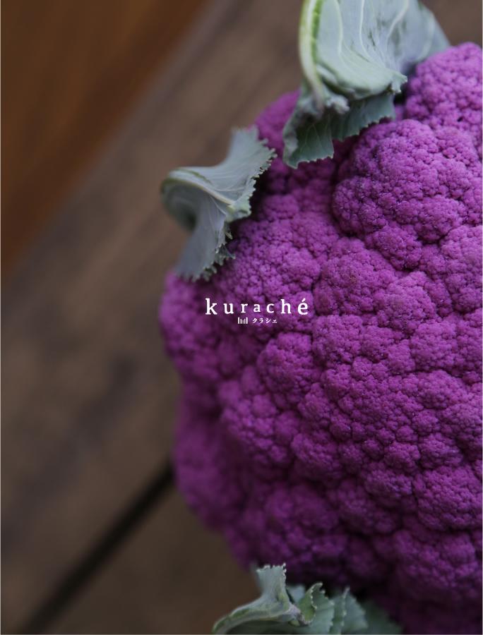 flyer02_160612_kurache565__